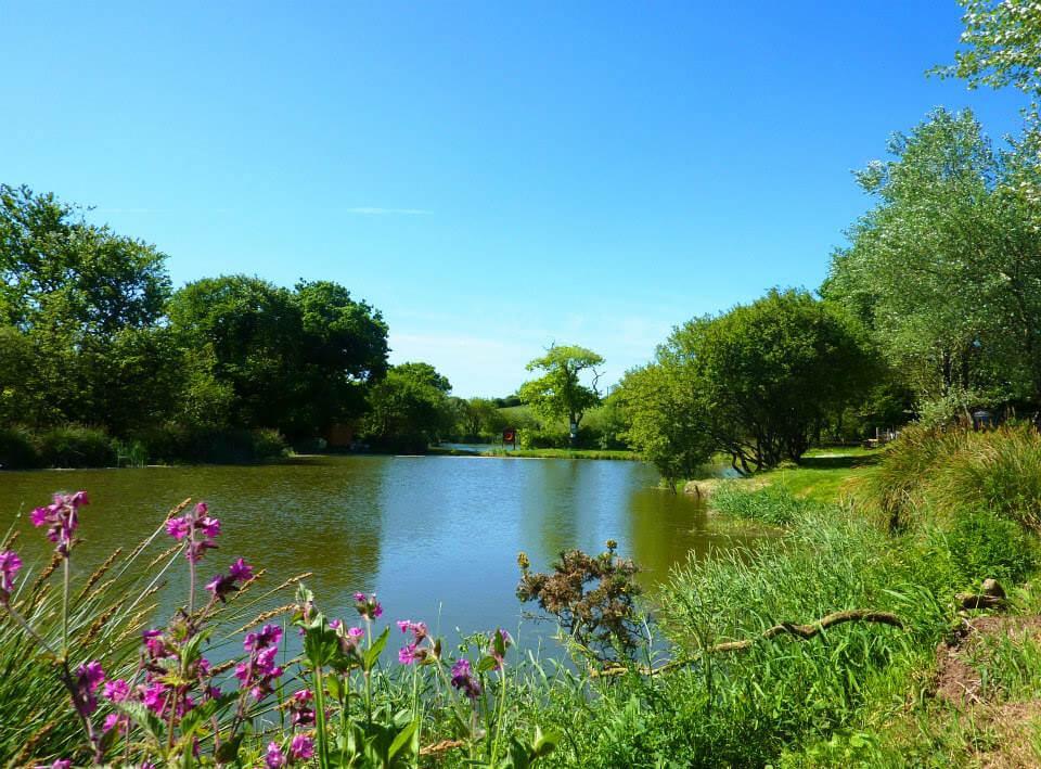 Meadow Lakes